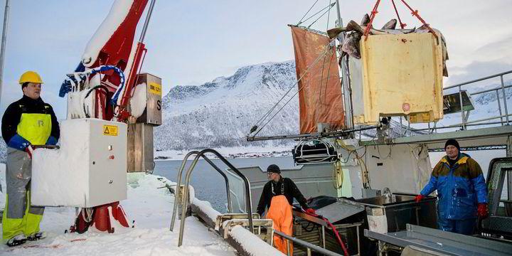 www.fiskeribladet.no