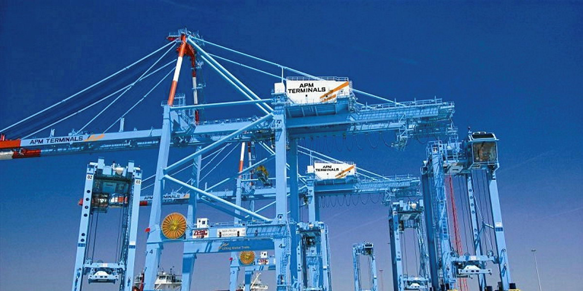 Cosco expands in Europe with Belgian terminal | TradeWinds